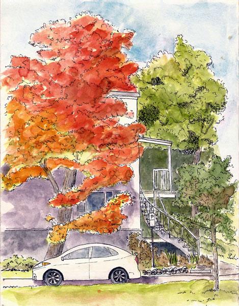 <b>Québec Autumn Foliage</b>