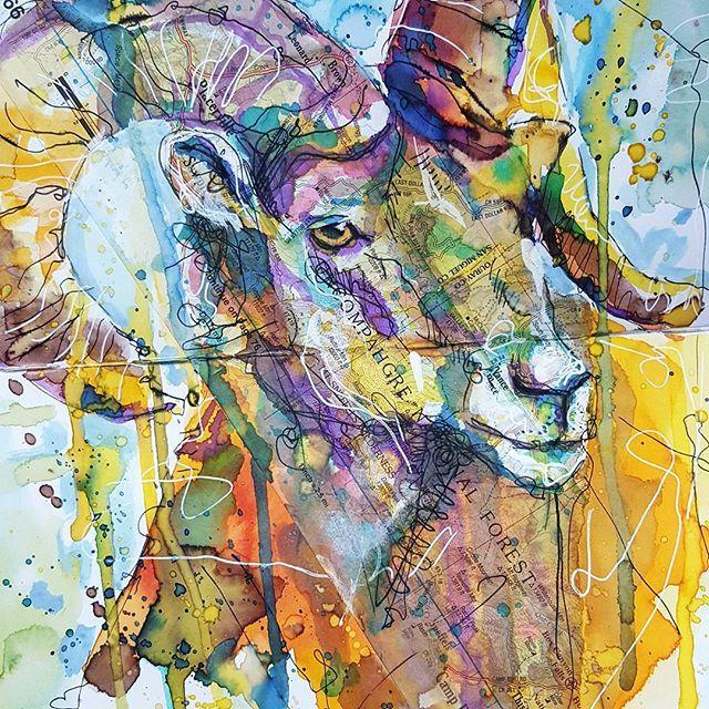 <b>Bighorn Sheep</b>