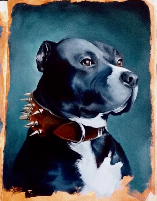 <b>Staffordshire Bull Terrier Study</b>