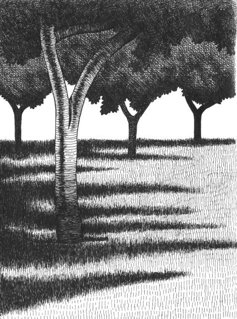 <b>U.O.P. Landscape 1</b>