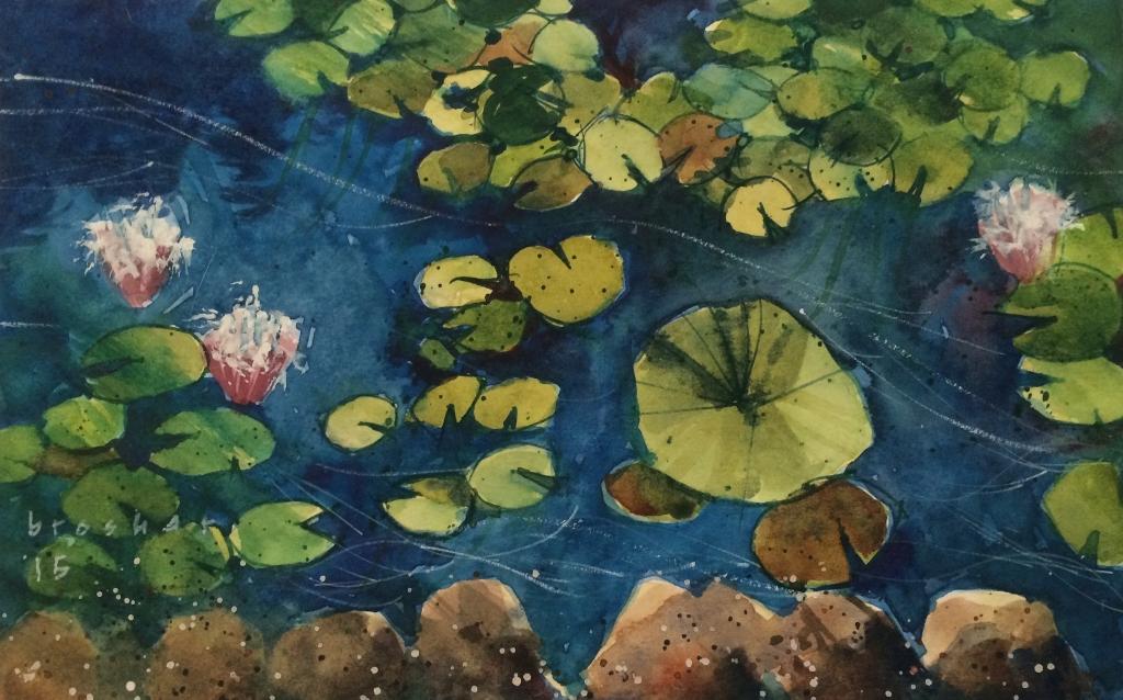 <b>Water Lilies</b>