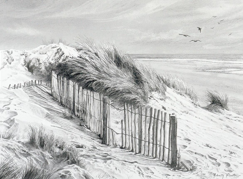 <b>English Coast Sand Dune</b>